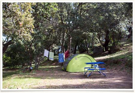 Camping La Vetta Camping Mobile Homes Chalets Villa In Corsica